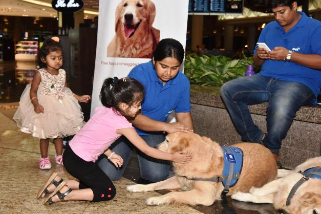 Mumbai Airport's Dog Therapy A Hit Among Fliers